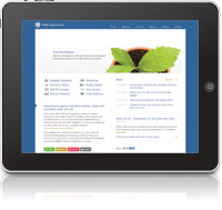 Web Solutions FREE iPad