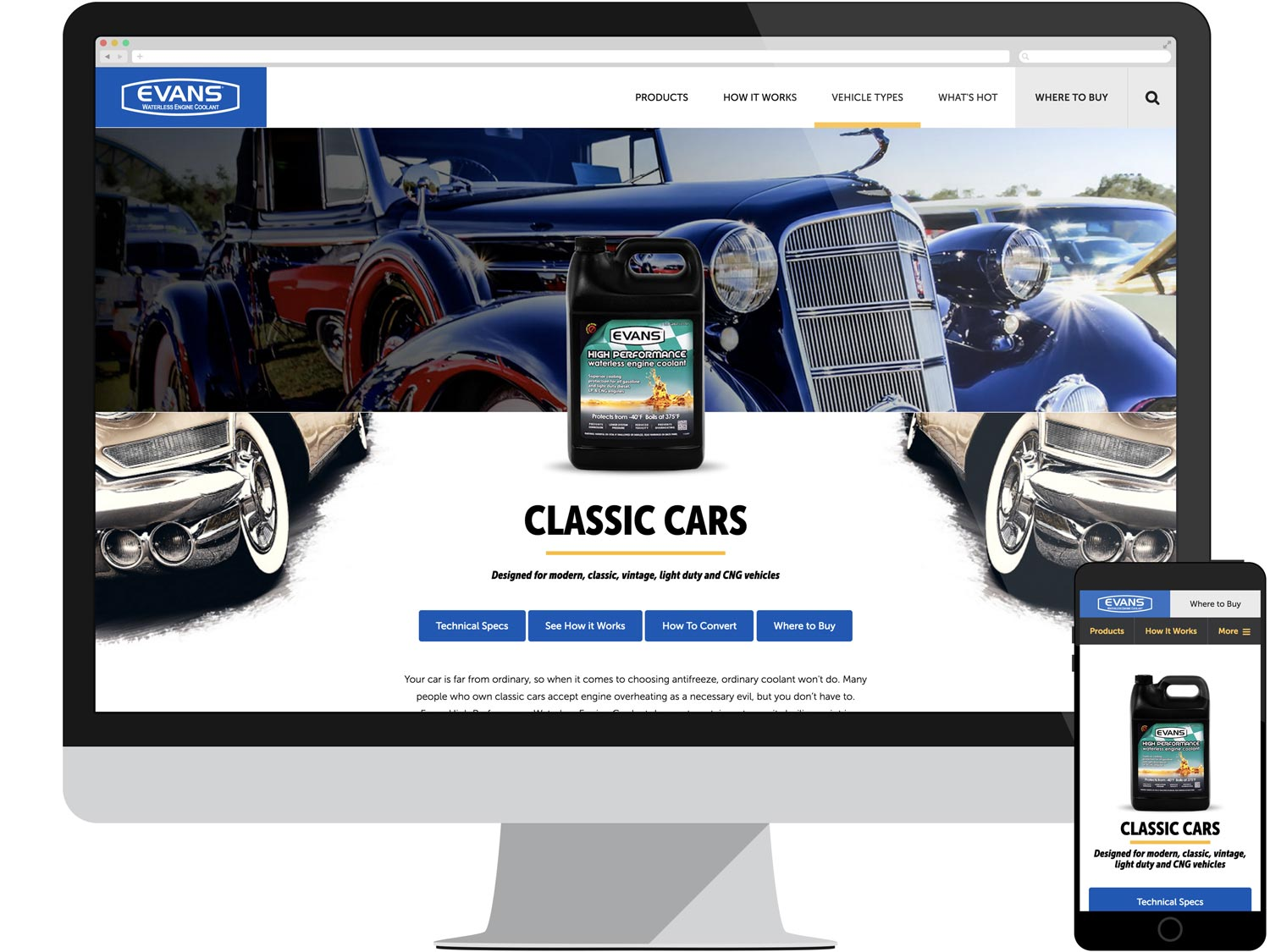 Audience Page - Classic Cars